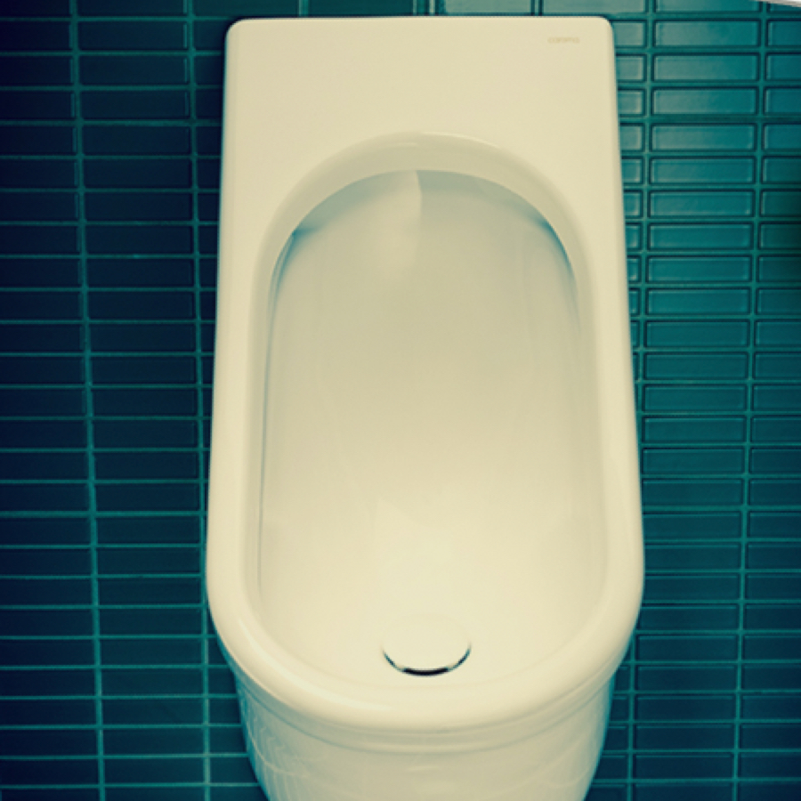 First WELS 6 Star Urinal