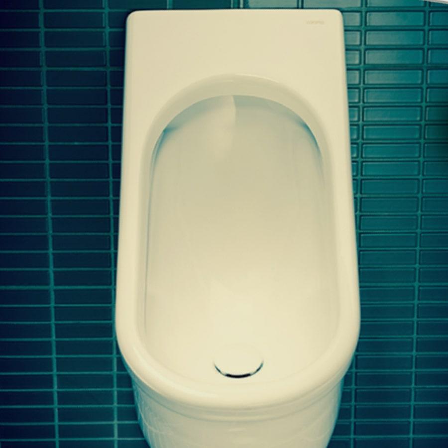 First WELS 6 Star Urinal